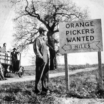 grapes of wrath great depression essay Read grapes of wrath project free essay and over 88,000 other research documents grapes of wrath project the grapes of the great depression was a time when.